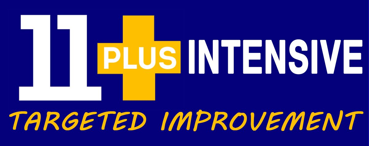 11 Plus Intensive